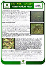 Autumn/Winter Disease Information